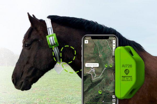 GPS pour chevaux