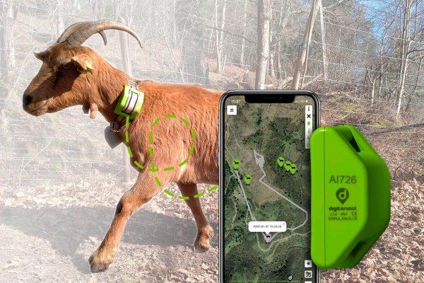 GPS pour chévres